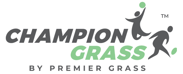 Champion Grass - Artificial, Synthetic & Fake Grass Online | Lawn Turf Australia